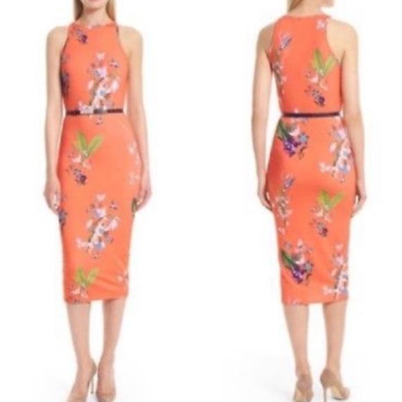 18b753c43a9 Ted Baker London Joelia Floral Bodycon Midi Dress.  M 5be78009819e9033959cdb89